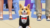The Sims 4: Cats & Dogs скриншот 2
