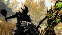 The Elder Scrolls 5: Skyrim скриншот 2